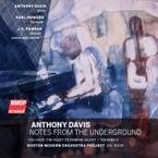Cover for Anthony Davis: Notes From The Underground