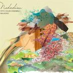 Cover for Nedudim