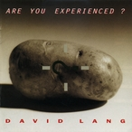 Cover for David Lang: Are You Experienced?