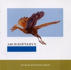 Cover for Archæopteryx